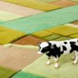 Carpets from Florian Pucher